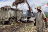 En defensa de la producción nacional,  derrotemos la reducción de aranceles en el sector azúcar-panelero