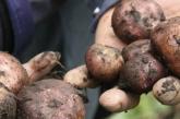 Carta de Dignidad Agropecuaria al Ministro de Agricultura sobre las importaciones de papa