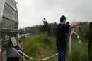 WhatsApp de un productor de leche al Minagricultura